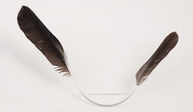 Le Rire du Corbeau - Empreinte d'un oiseau en vol